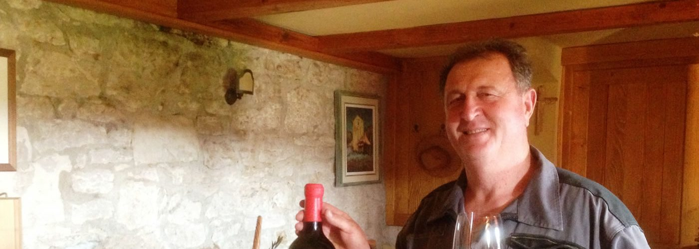 Slovenia Stop Croatia's Indigenous Grape Teran Wine Entry into the EU